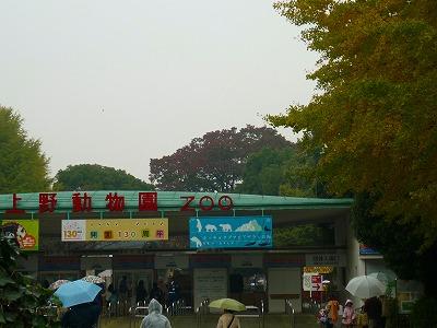 P1120914.jpg